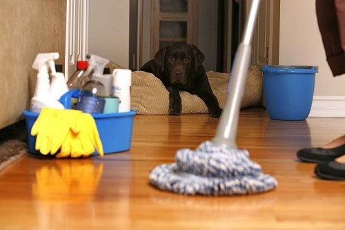 Helping-Hands-domestic-cleaning-services1